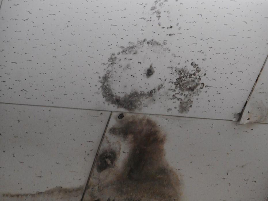 劣化が激しい屋根材や雨漏りしている屋根
